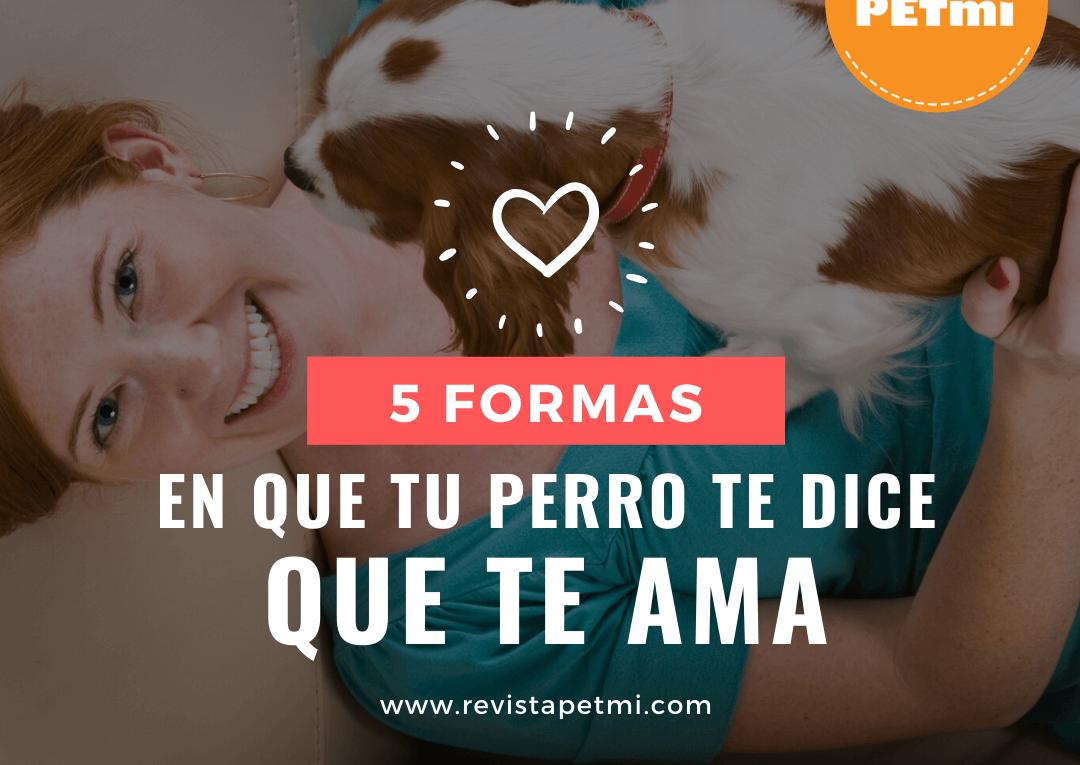 tu perro te dice que te ama (5) (1)