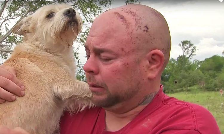 Hombre se reúne con su perro