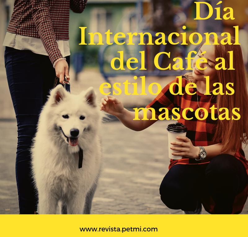 Día Internacional del Café al estilo de las mascotas (3)