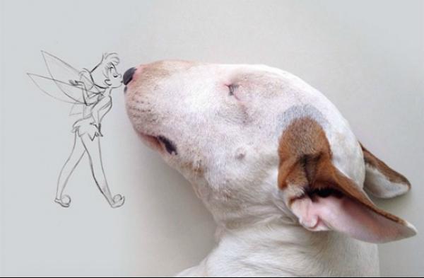supera separación gracias a su perro