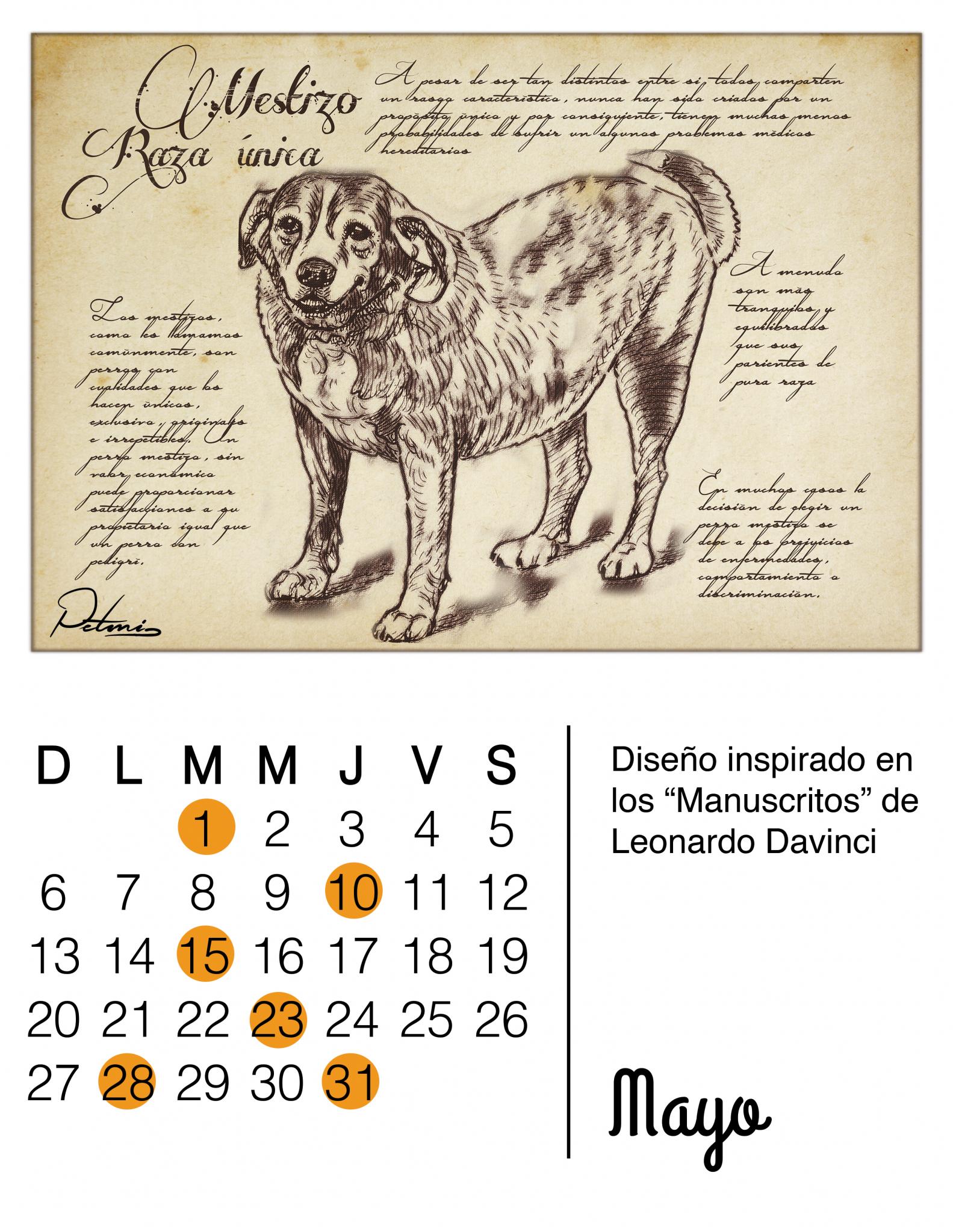 Calendario Perruno.Calendario Petmi 2018 Fechas Importantes Para Las Mascotas
