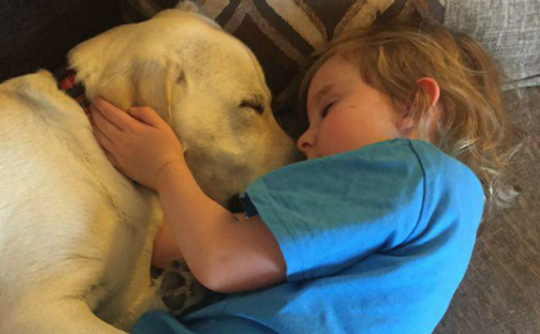Perro salva a niña