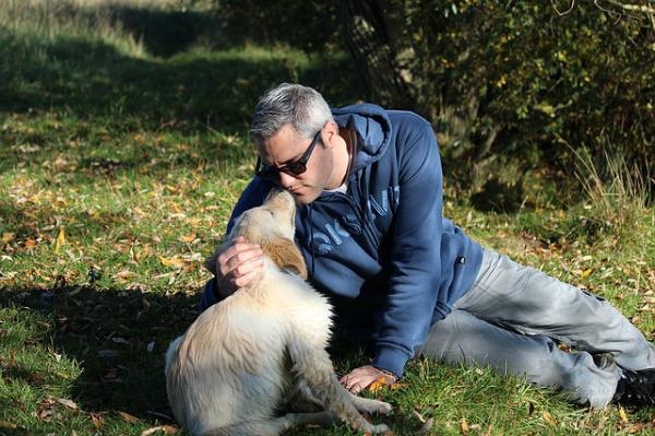besar a tu mascota