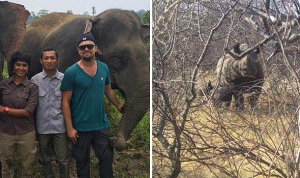 Leonardo DiCaprio viaja a Sumatra