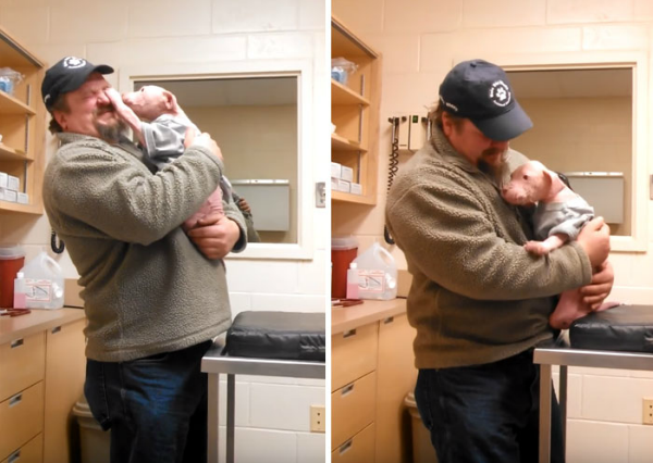 Rescatador de cachorro pitbull