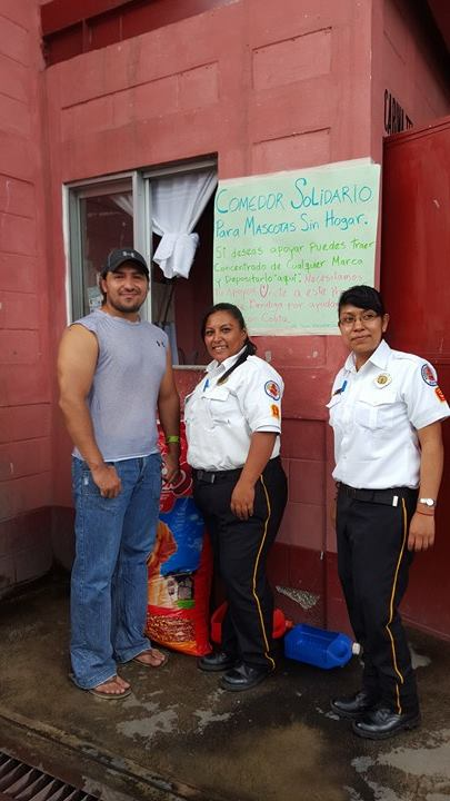Comedor solidario para mascotas sin hogar - Bomberos Voluntarios Guatemala