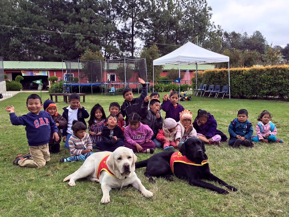 El viaje de Ed - WayBi Guatemala