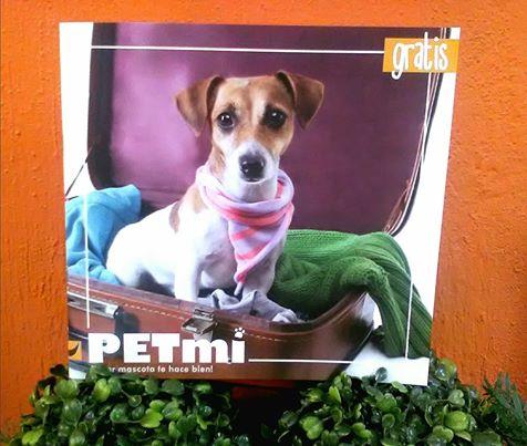 revista PETmi