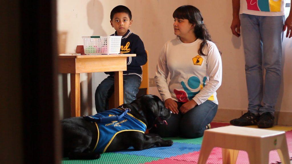 Kimono, el primer perro de asistencia para niños con autismo en Guatemala