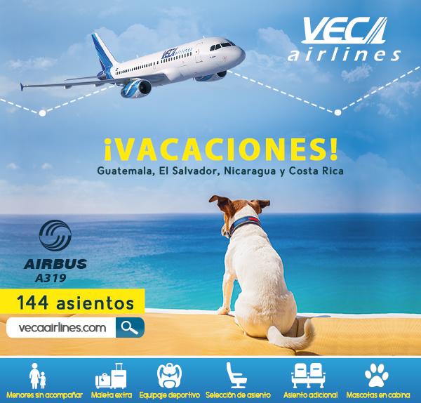 Nos vamos de viaje con nuestra mascota: ¿estás preparado?