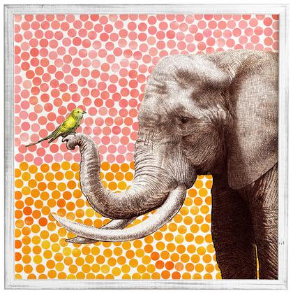 12 de agosto dia mundial del elefante