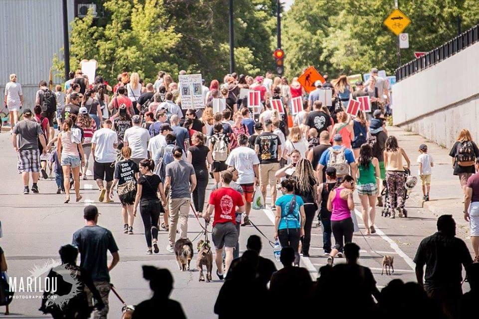 quebec-pitbull-protest