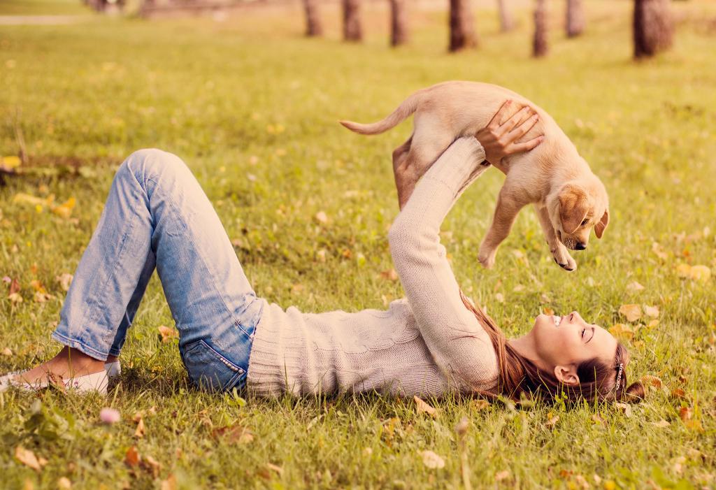 6 razones por las que un perro saca nuestro niño interno