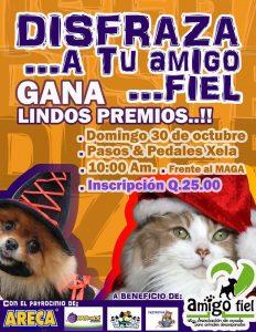 Halloween para perros en Guatemala - Amigo Fiel