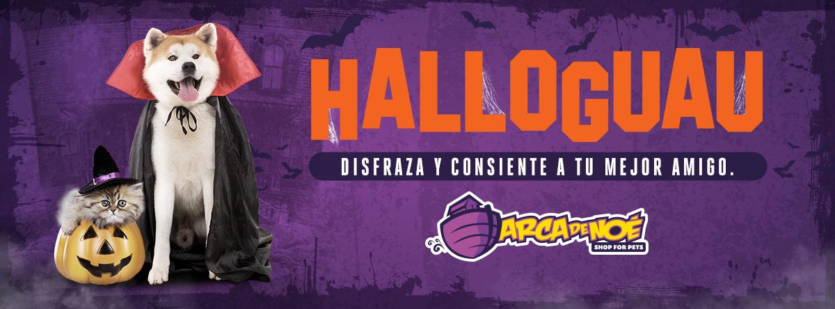 Halloween para perros Guatemala - Arca de Noé