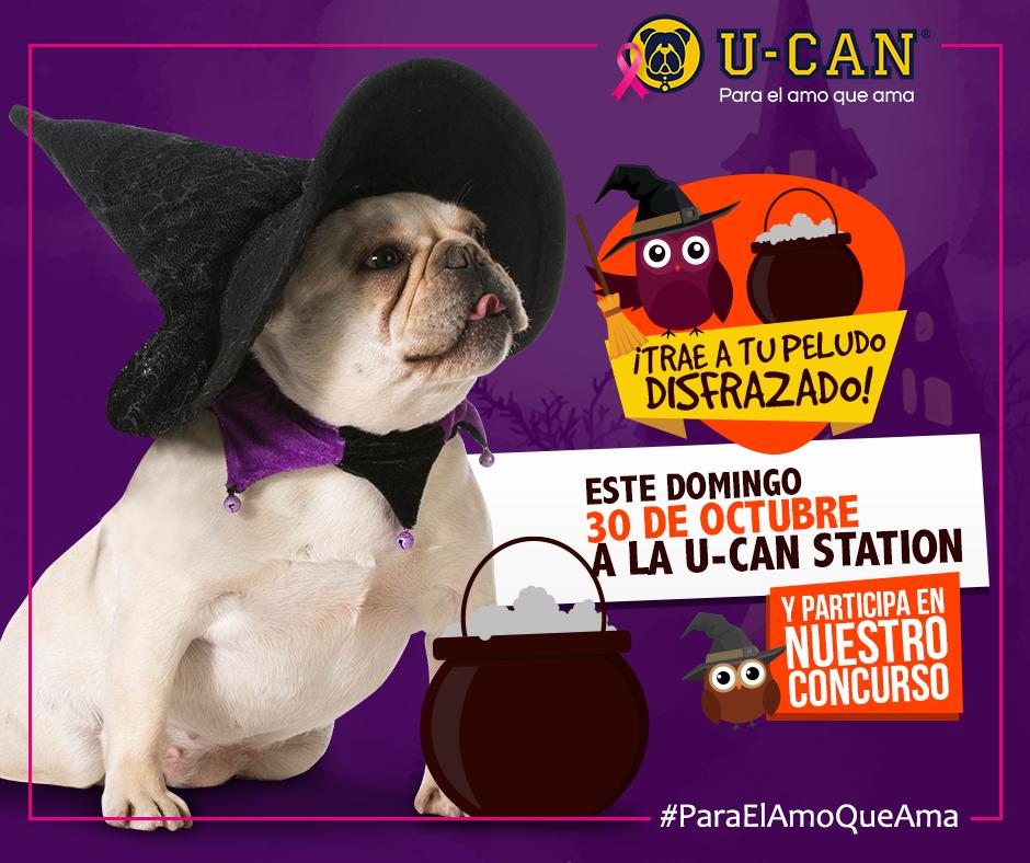 halloween-para-perros-en-guatemala-u-can