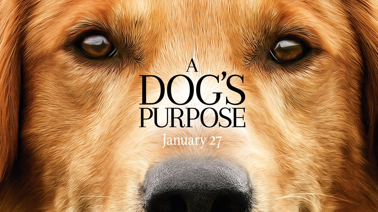A dogs purpose la pelicula