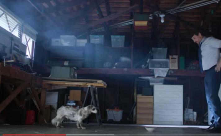 Comercial Honda - Adopcion de perros