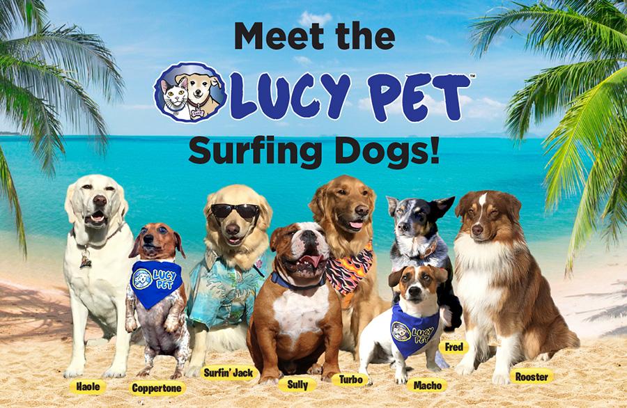 Perros surfistas en el desfile de las Rosas 2017