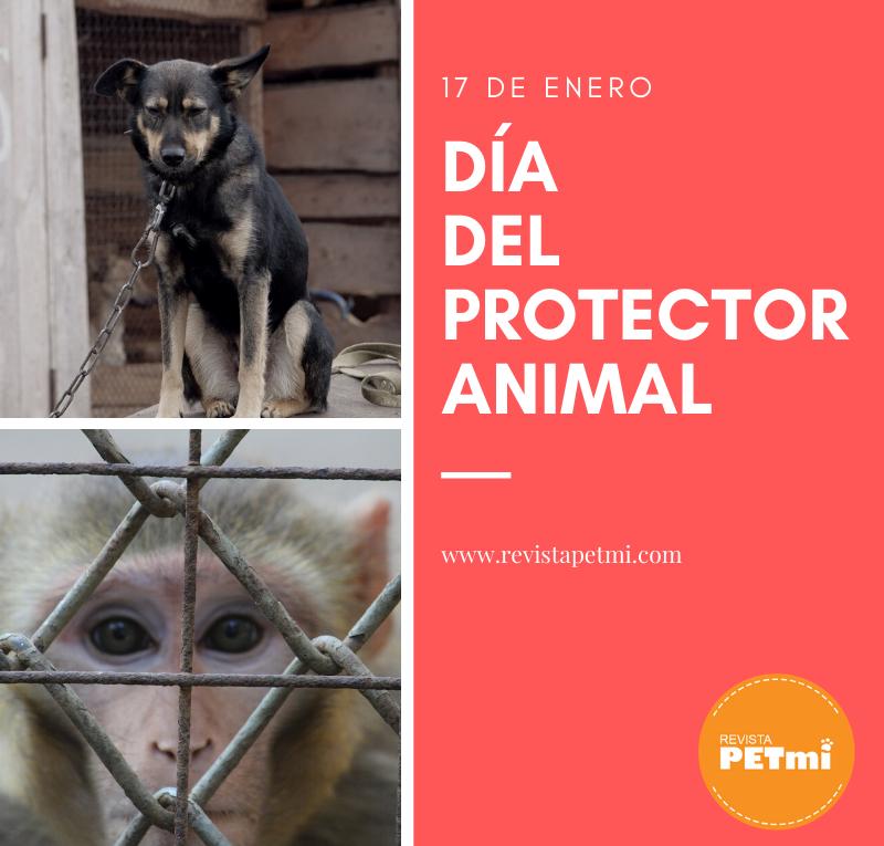 día del protector animal