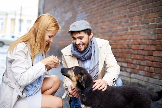 Intuición canina - cosas que tu perro