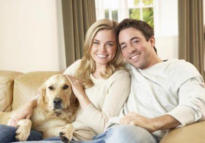 Cosas que tu perro sabe de ti