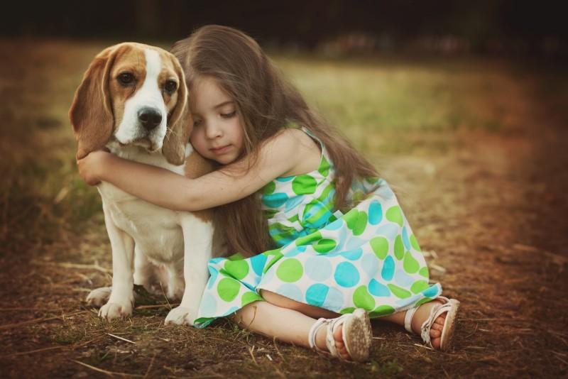 como alargar la vida de una mascota