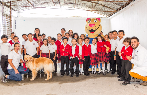 Charlas de Tenencia Responsable de Mascotas - tenencia responsable de mascotas guatemala