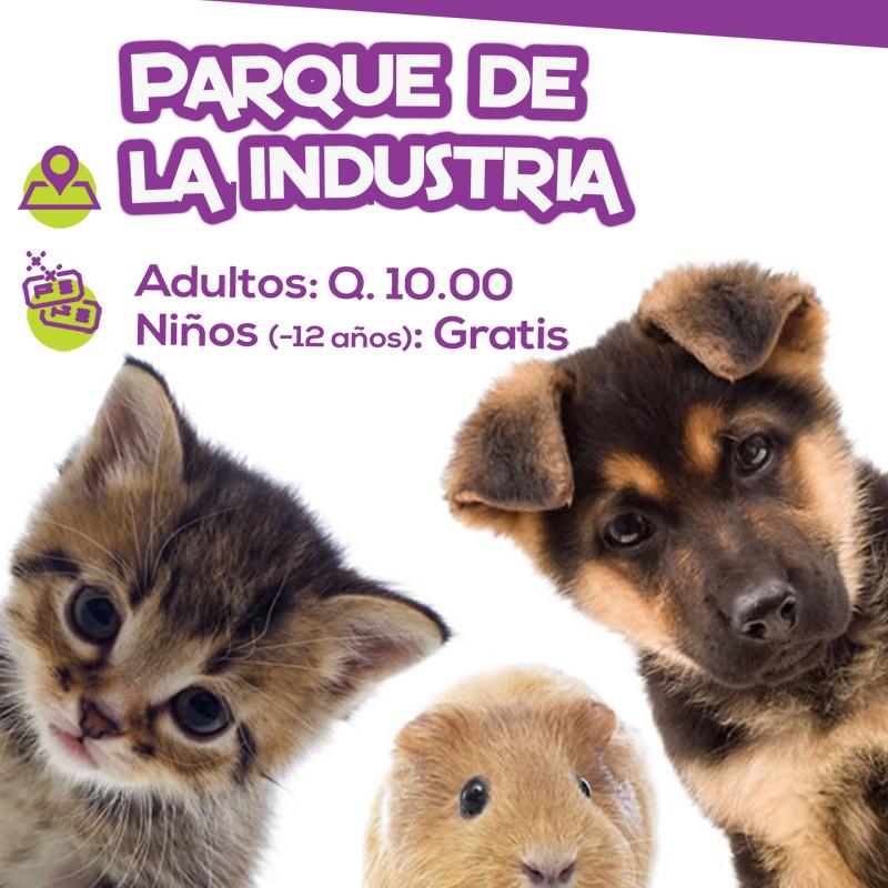 Expo Mascotas 2018 Guatemala