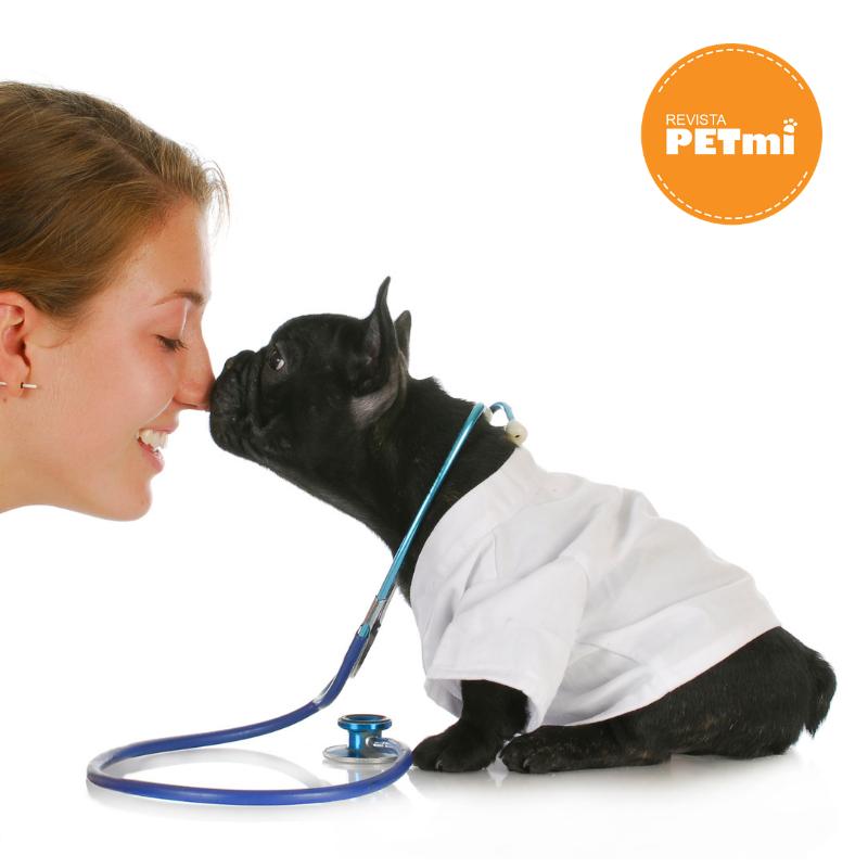 como saber si tu mascota tiene enfermedad cardiaca