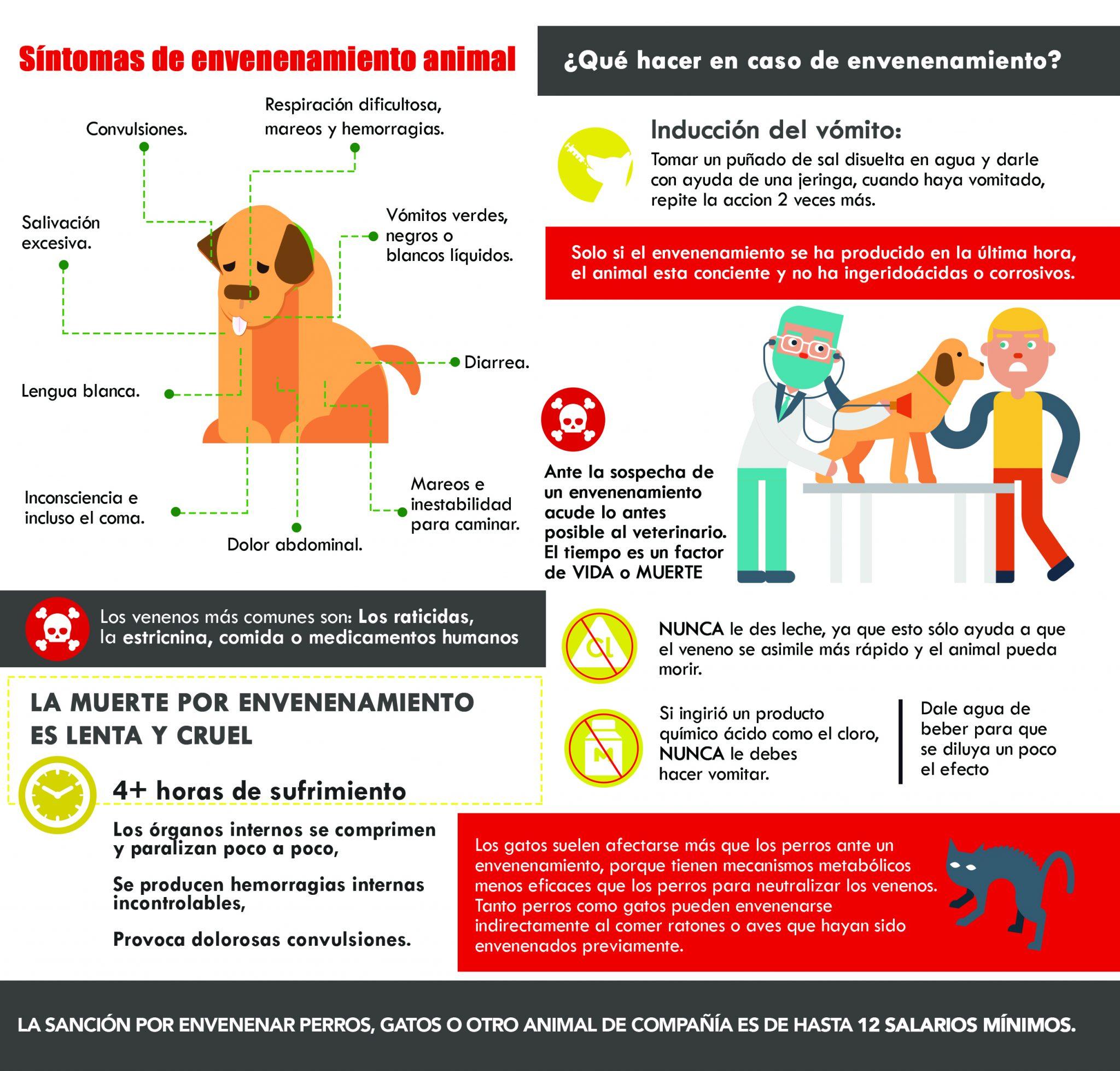 Sintomas de envenenamiento animal