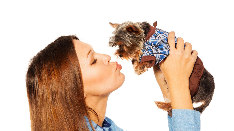 Moda Perruna: Descubre cuáles son las características adecuadas para para la ropa de tu mascota