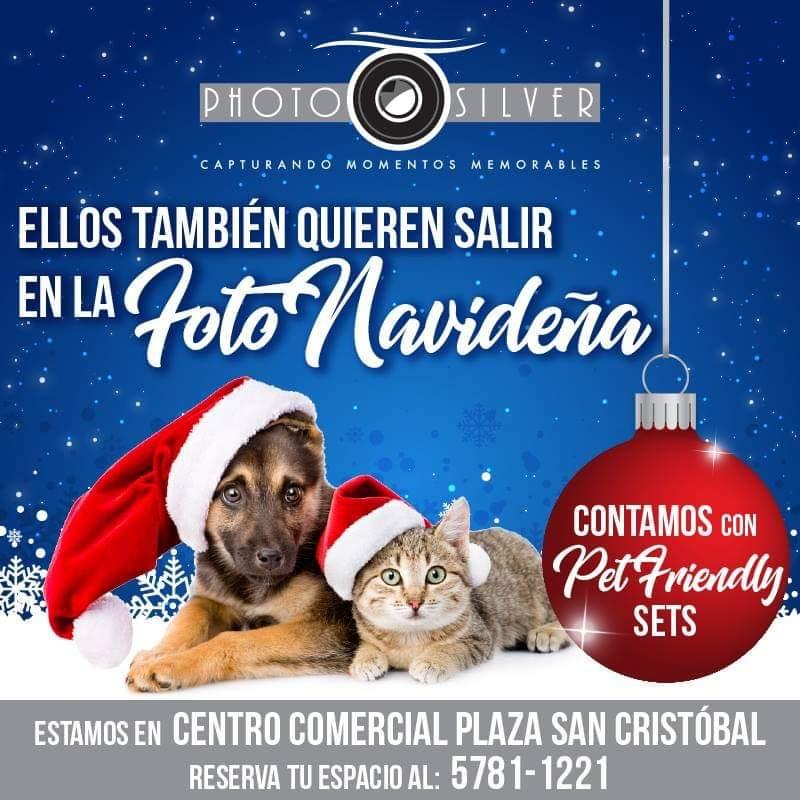Sets Navideños Pet Friendly en guatemala