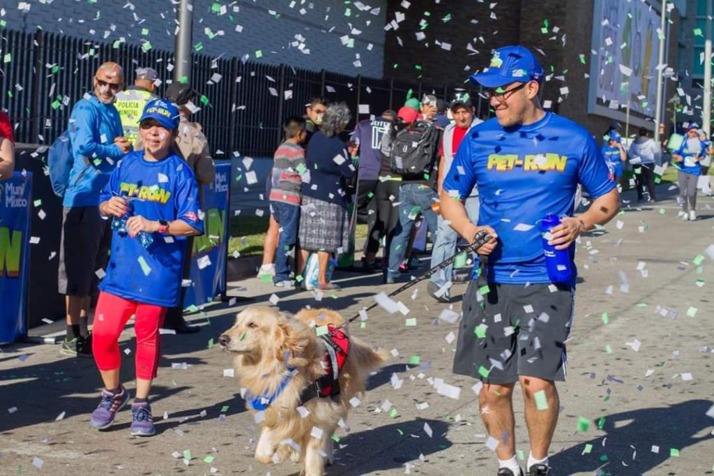 PET RUN 2019, a beneficio del albergue municipal de mascotas 2019