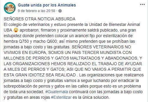 castración en mascotas en riesgo