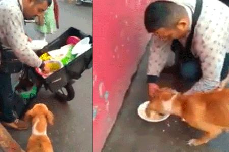Recorre la ciudad en motocicleta con el único fin de alimentar a los perros callejeros