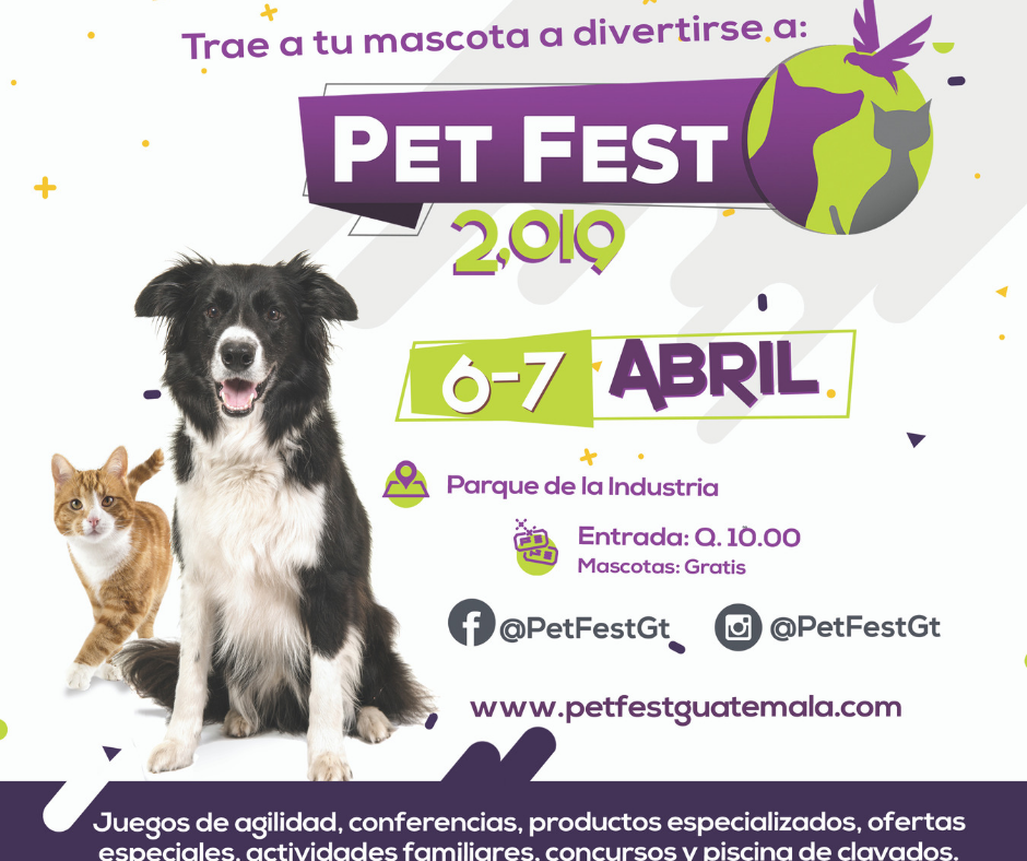 pet fest 2019 un evento para toda la familia y tu mascota
