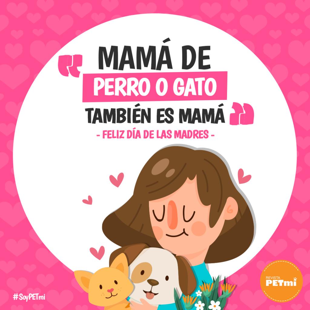 mamá de mascotas #petmom