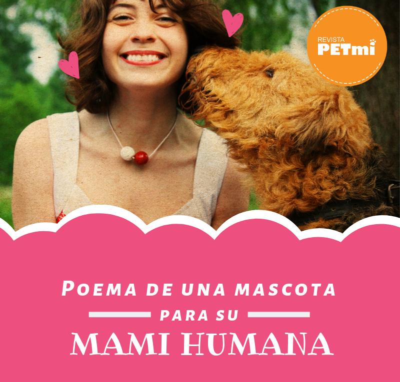 Poema de una mascota para su mami humana (3)