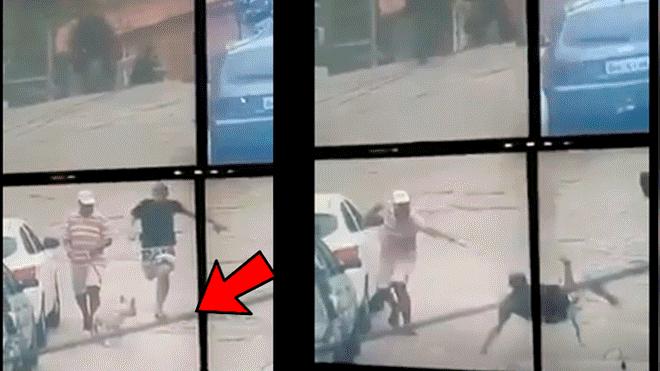valiente heroe canino, ayuda a detener a un ladrón en México