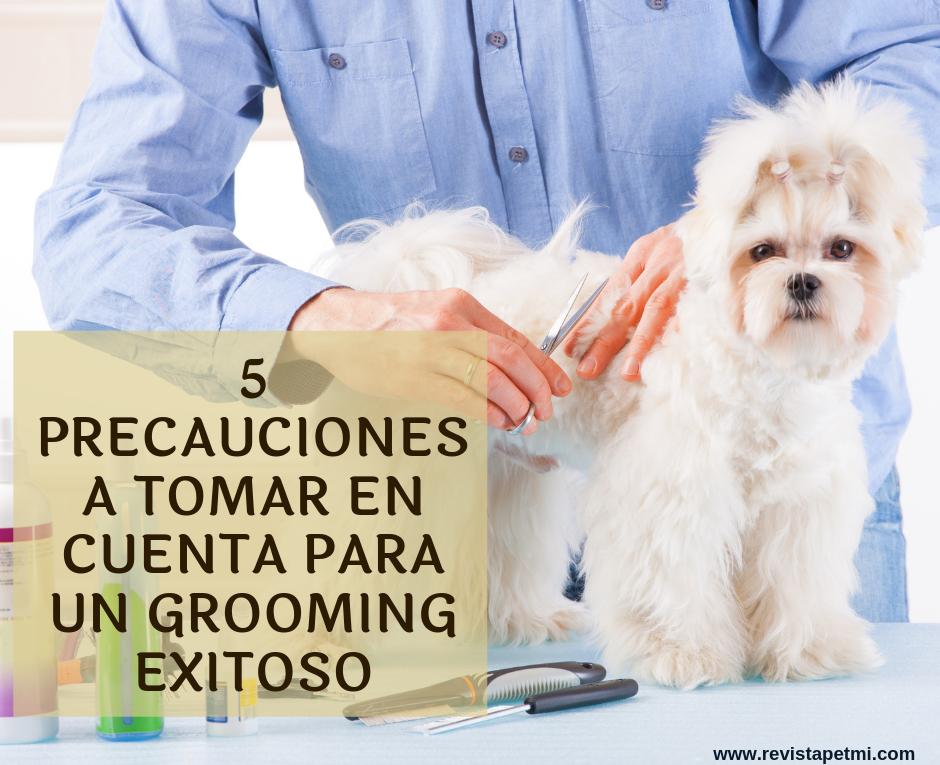 5 precauciones a tomar en cuenta para un grooming exitoso (2)
