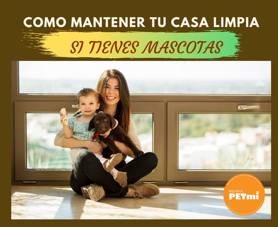 COMO MANTENER LA CASA LIMPIA SI TIENES MASCOTA