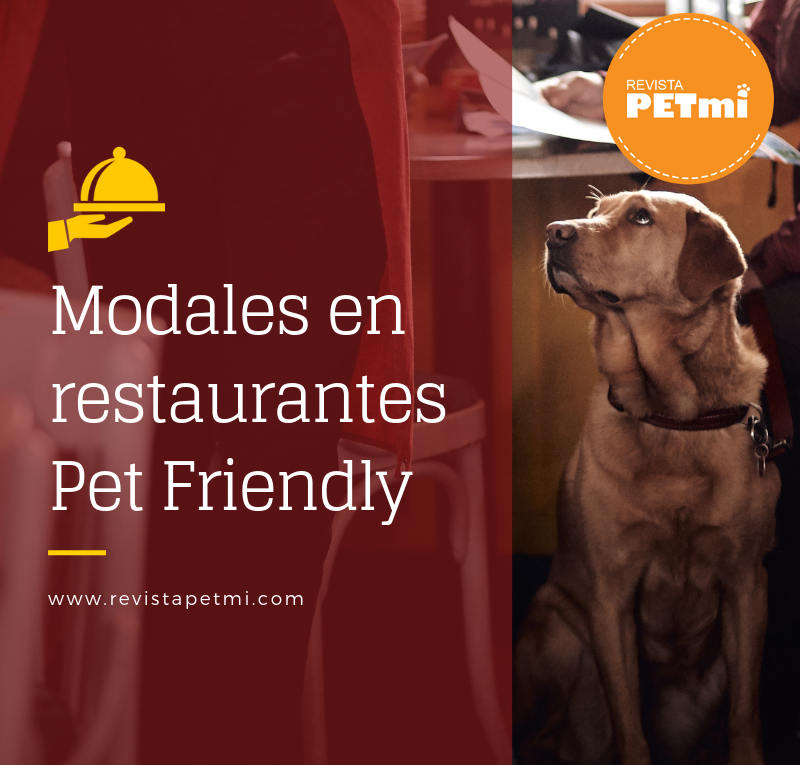 Modales en restaurantes Pet Friendly