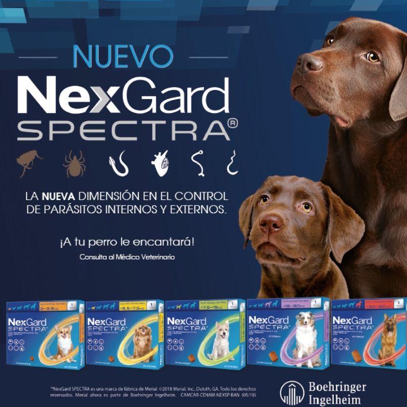 NEXGARD SPECTRA, NEXGARD SPECTRA, la tableta masticable que protege a tu perro contra pulgas, garrapatas, ácaros, los parásitos redondos más importantes que afectan al perro y el humano y además, previene la mortal enfermedad causada por el parásito del corazón