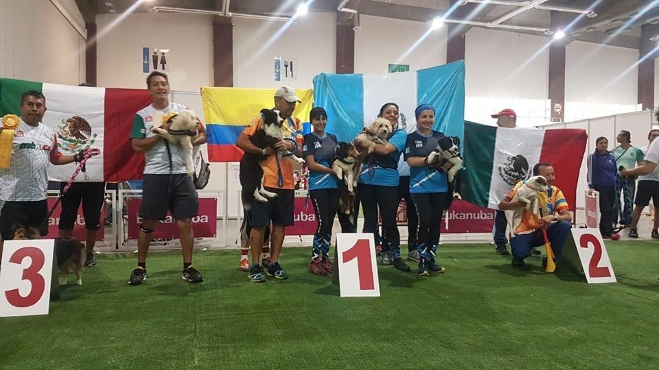 Guatemala se lleva el primer lugar en XIX Campeonato de Agility de las Américas y el Caribe Acapulco, México 2019
