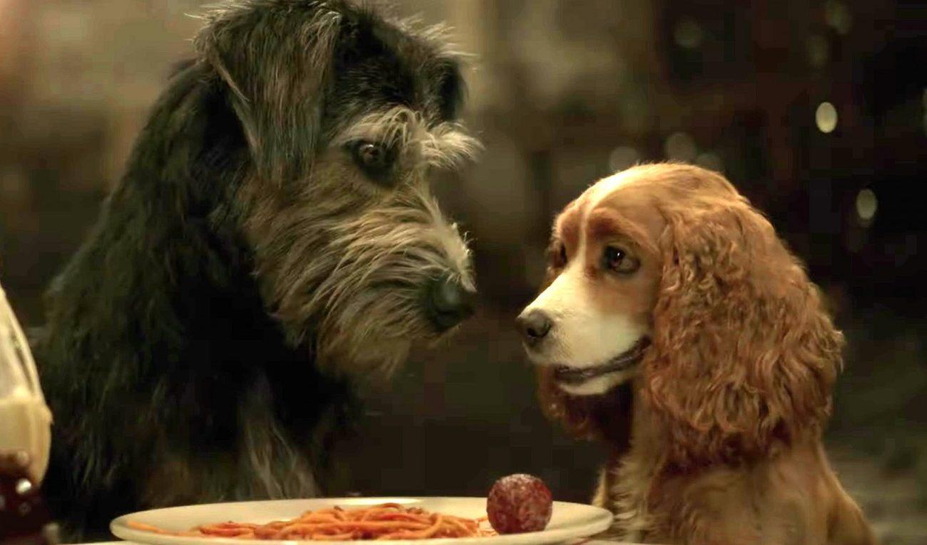 la Dama y el vagabundo, la pelicula y sus protagonistas son perros rescatados.