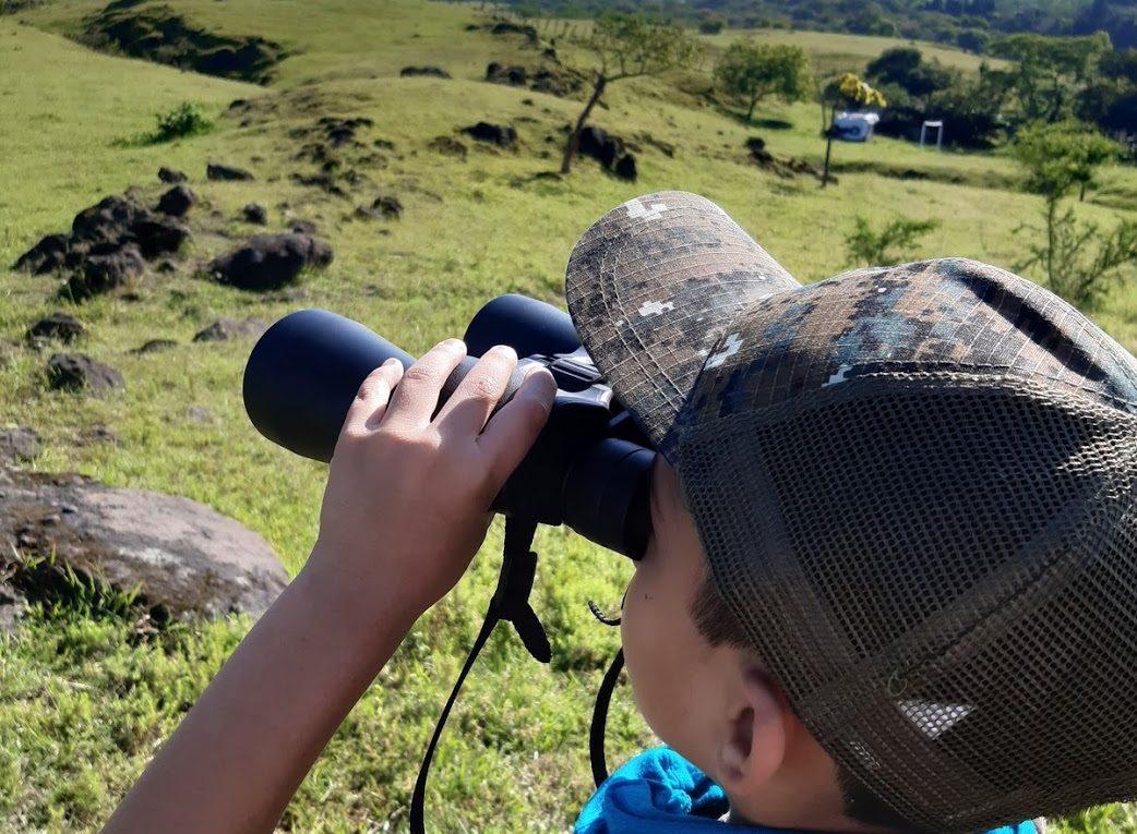 AvistamientodeAves-fincaelamate-birdwatching guatemala