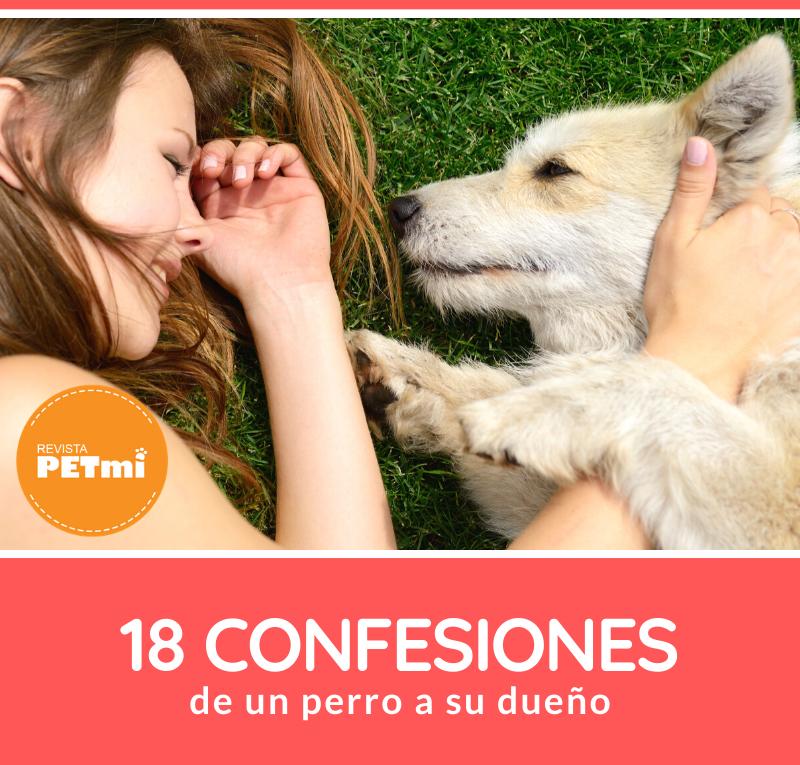 18 confesionesconfesiones de un perro