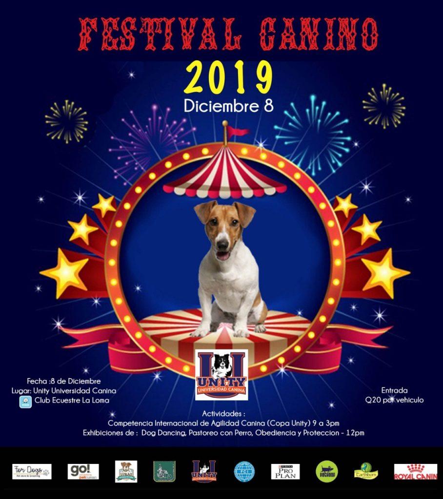 Festival Canino 2019 Agility en Guatemala