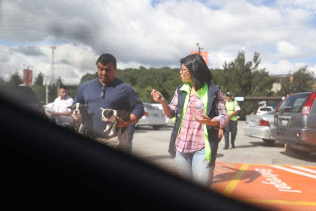 VENDEDORES DE MASCOTAS EN MIXCO